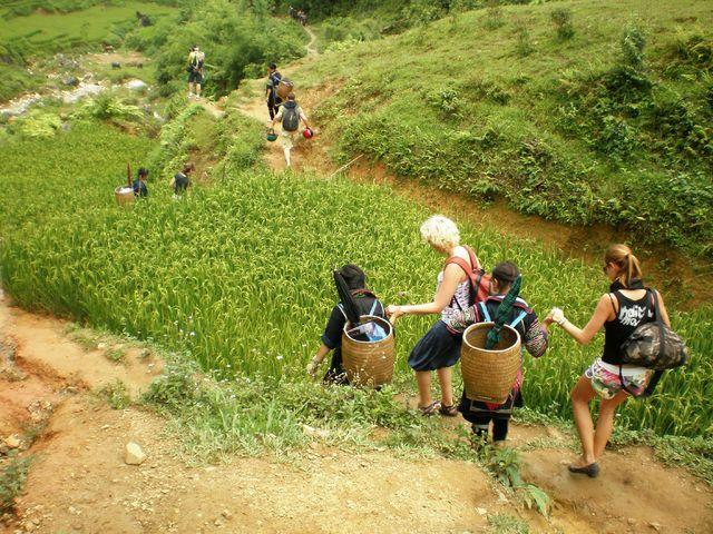 natuur_vietnam