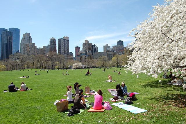 10_foto's_new_york_central_park