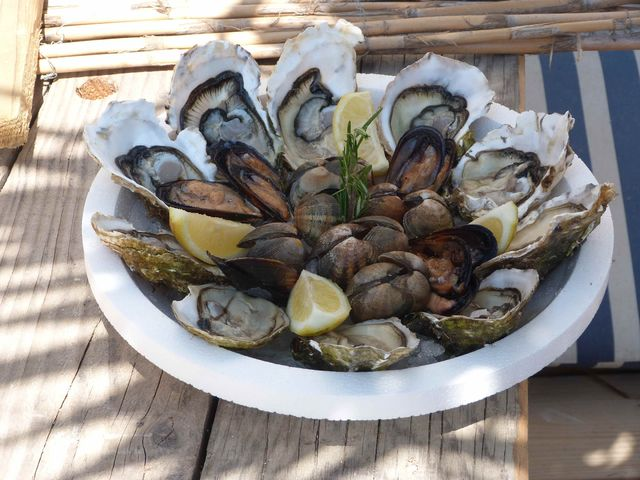 Oesters_Leucate