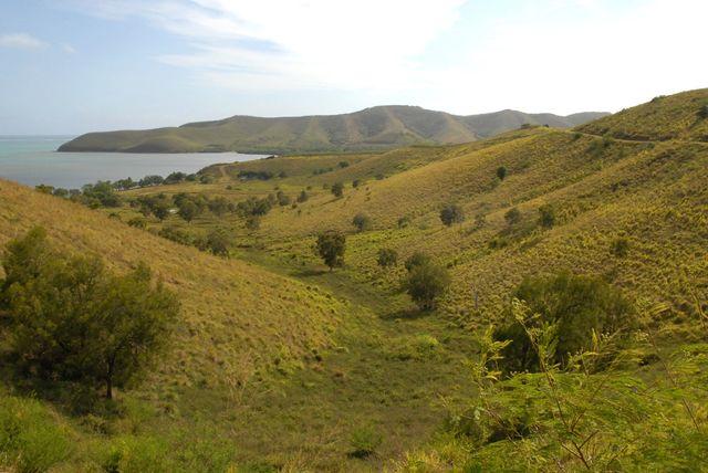 natuur_Nieuw_Caledonië