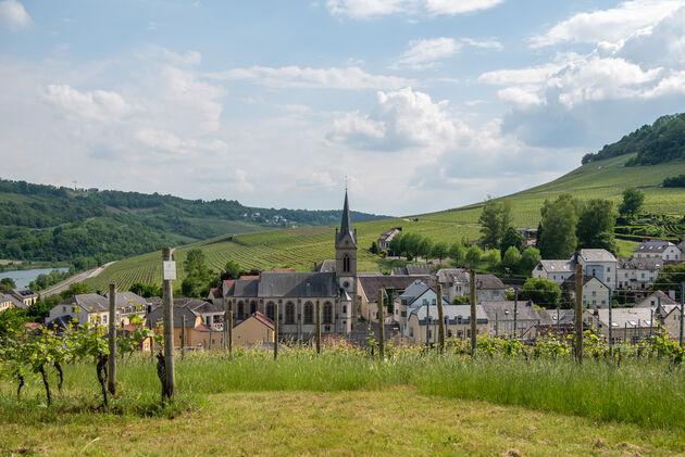 ahn-luxemburg