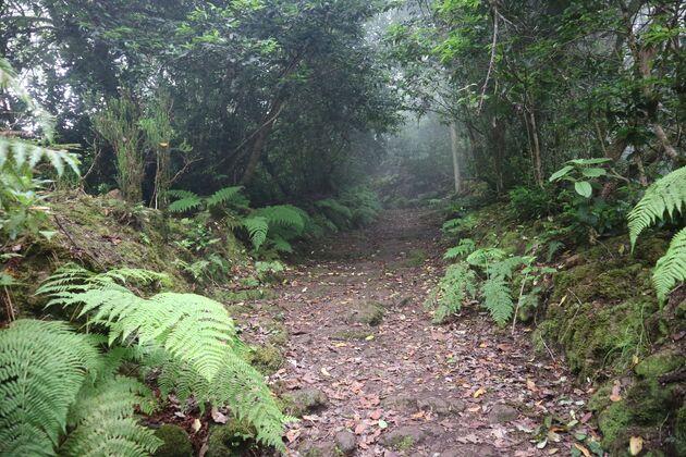 Anaga Park hike