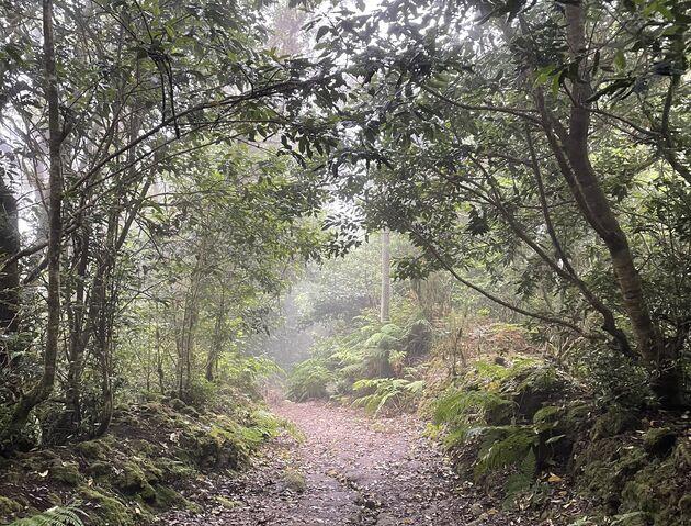 Anaga Rural Park wandelen