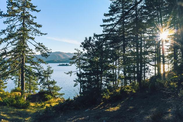 aoos-springs-lake