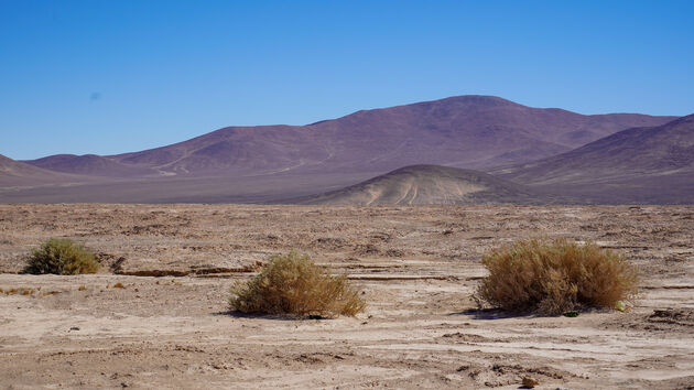 atacama-woestijn