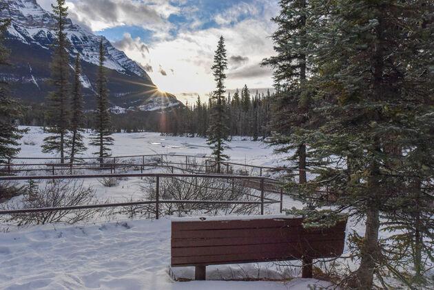 athabasca-falls-zon