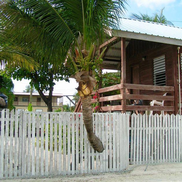 belize-huis