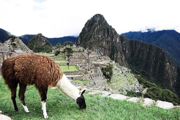 bewoner-Machu-Picchu-