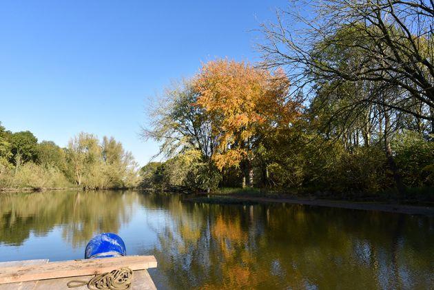 biesbosch-met-vlot