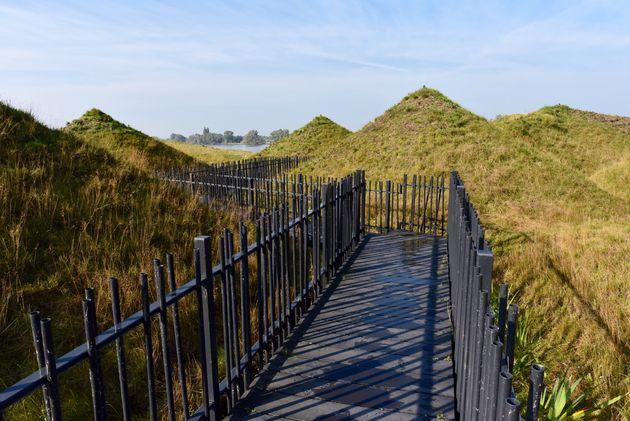 biesbosch-museumeiland