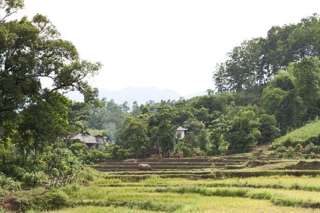 binnenland-vietnam