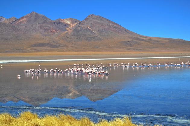 bolivia-Salar-de-Uyuni