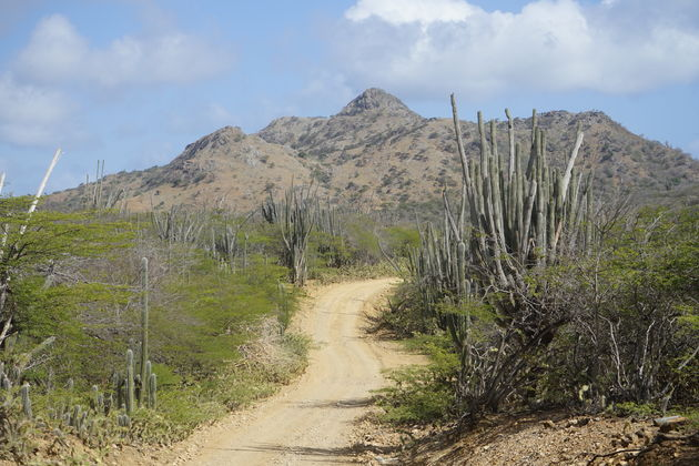 Bonaire_Washington_Slagbaai_National_Park