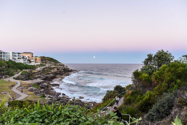 bondi-bronte-beach-walk
