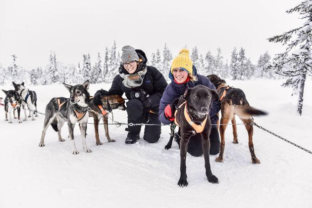 brett-marloes-honden-lapland