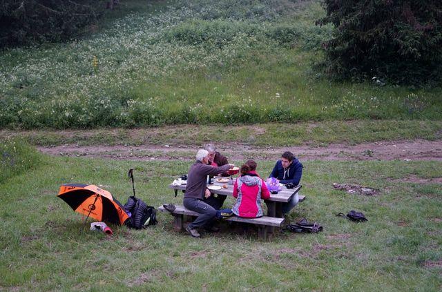 picnic_punt