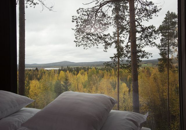 pillows_view_treehotel