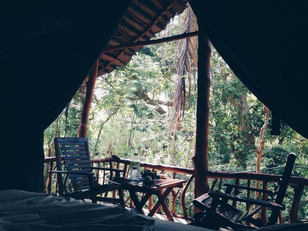 cabana-jungle-sri-lanka