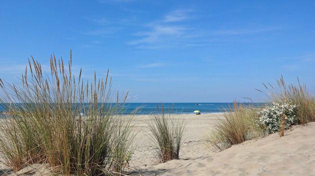 camargue-strand