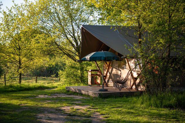 camping-de-roos-tent