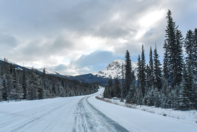 canada-icefields-parkway
