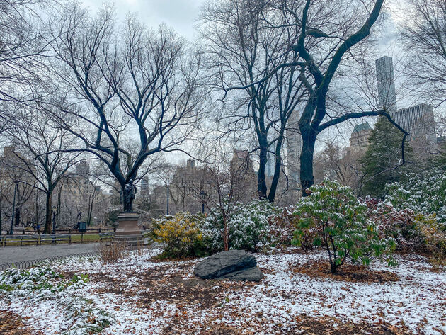 central-park-sneeuw
