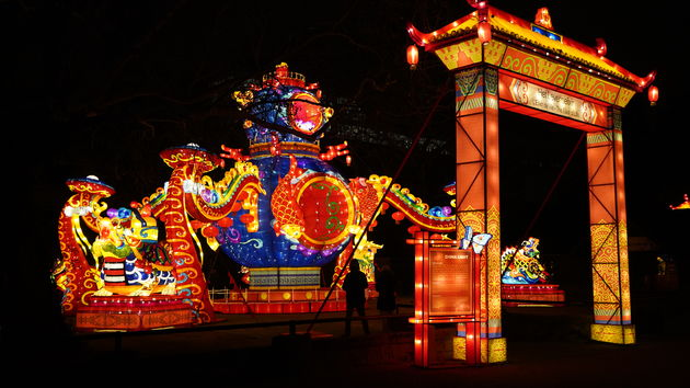 China_Light_Zoo_Antwerpen_Levenselixer