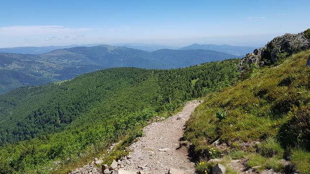 Col du Grand Ballon_trail