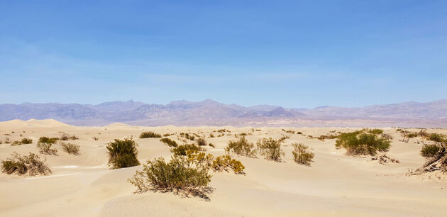 Death_Valley_Mesquite_Flat Sand_Dunes