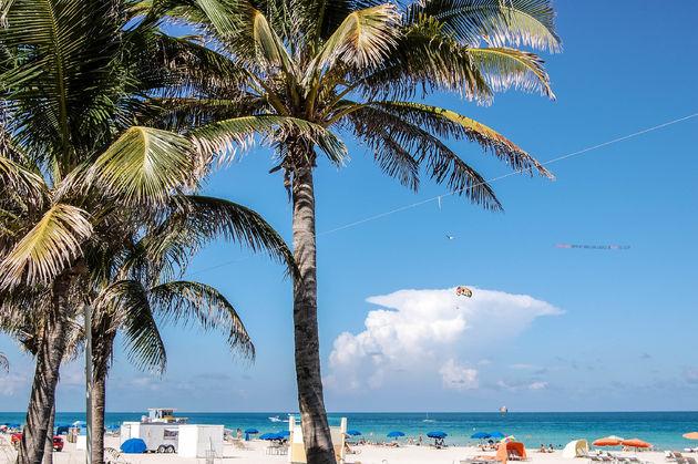 doen-miami-south-beach