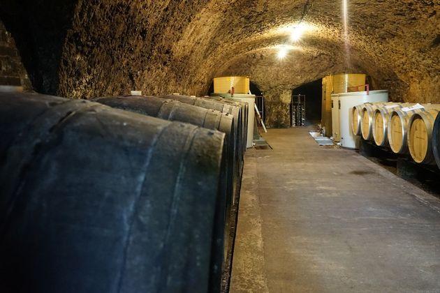 domaine_Raderie_croisard_wijnkelder