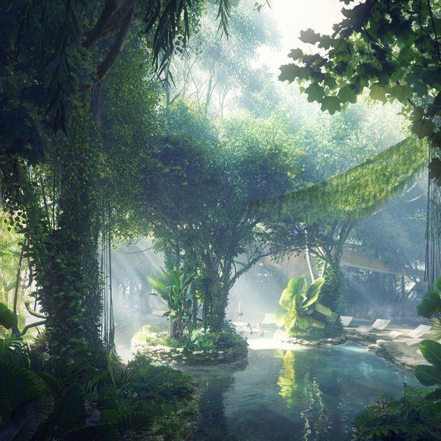 dubai-regenwoud