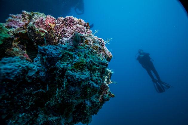 duiken-Abrolhos-archipel