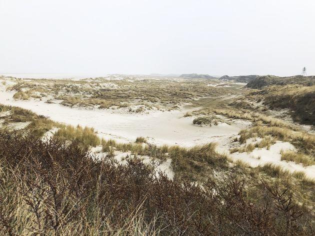 duinen-ameland