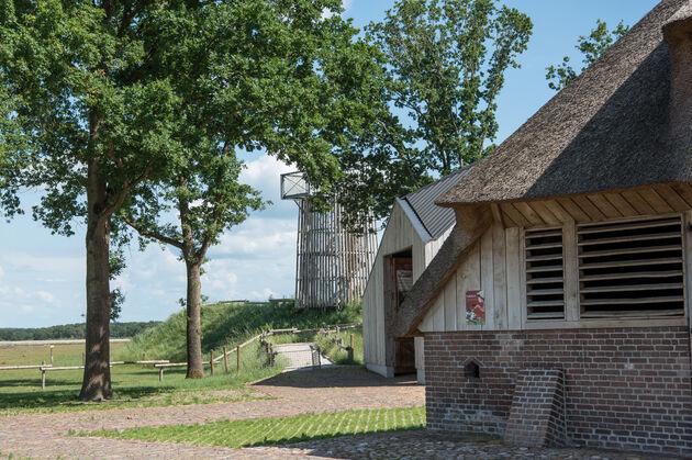 dwingelderveld-uitkijktoren