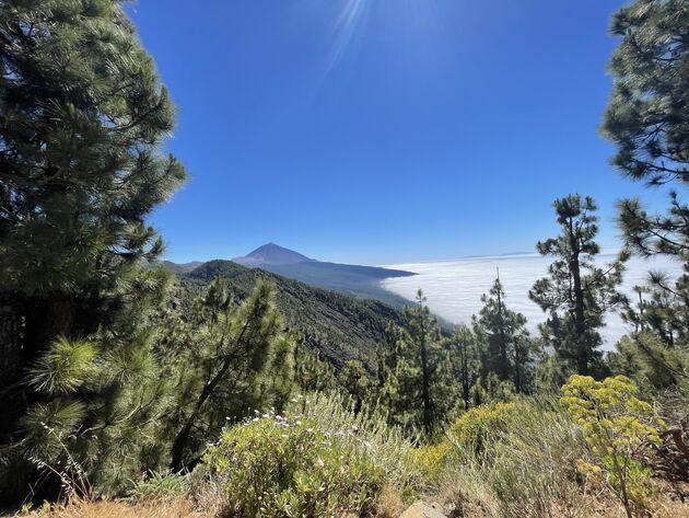 El Teide wandelen