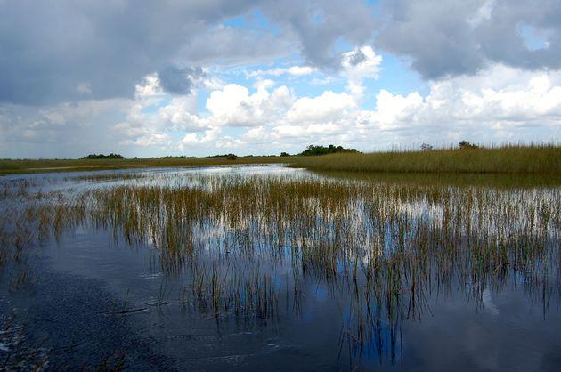 everglades_florida_uitzicht_water