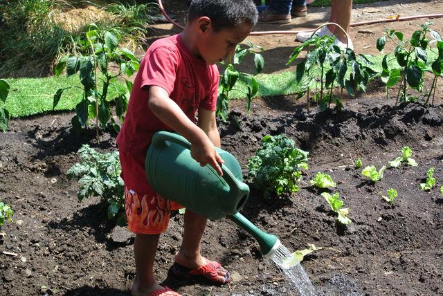 kinderen druk bezig in de tuin