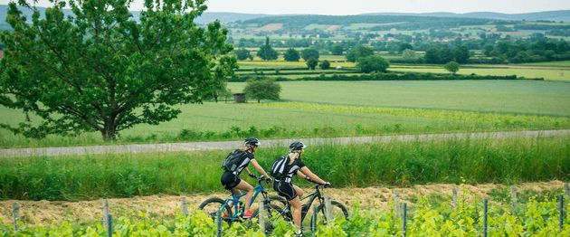 fietsen-bourgondië