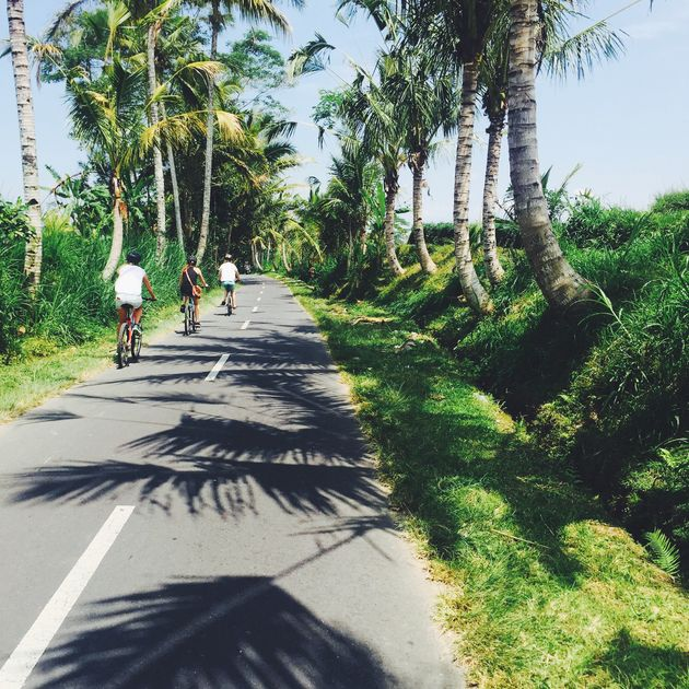 fietsen-ubud