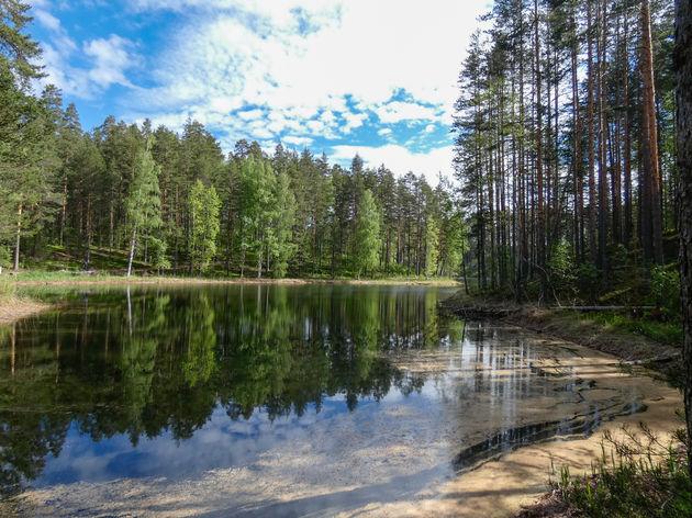 finland-natuur