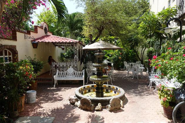 Flor-de-Michoacan-tuin