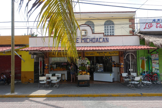 Flor-de-Michoacan