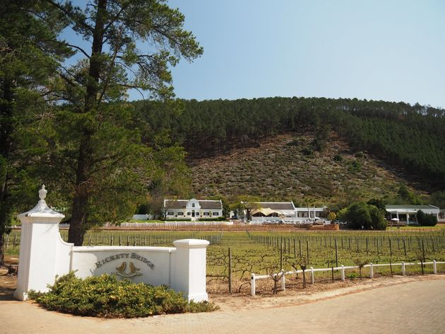 Franschhoek Rickety Bridge Wine Estate (3)