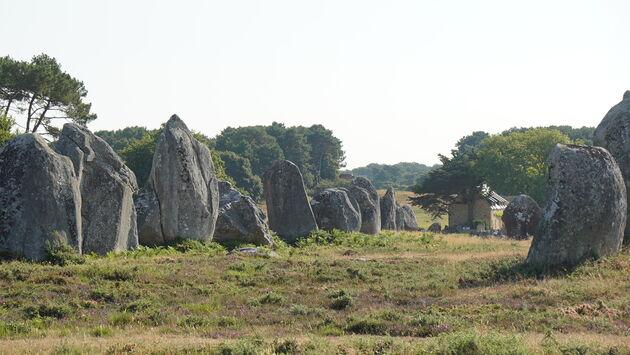 Gigantische_stenen_Carnac