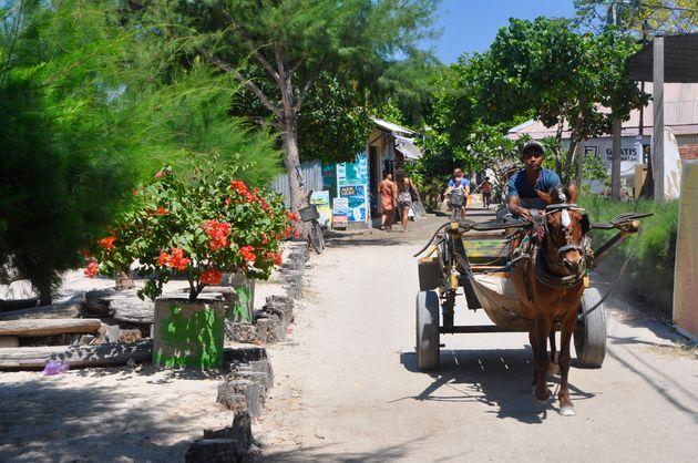 gili-eilanden-paard-wagen