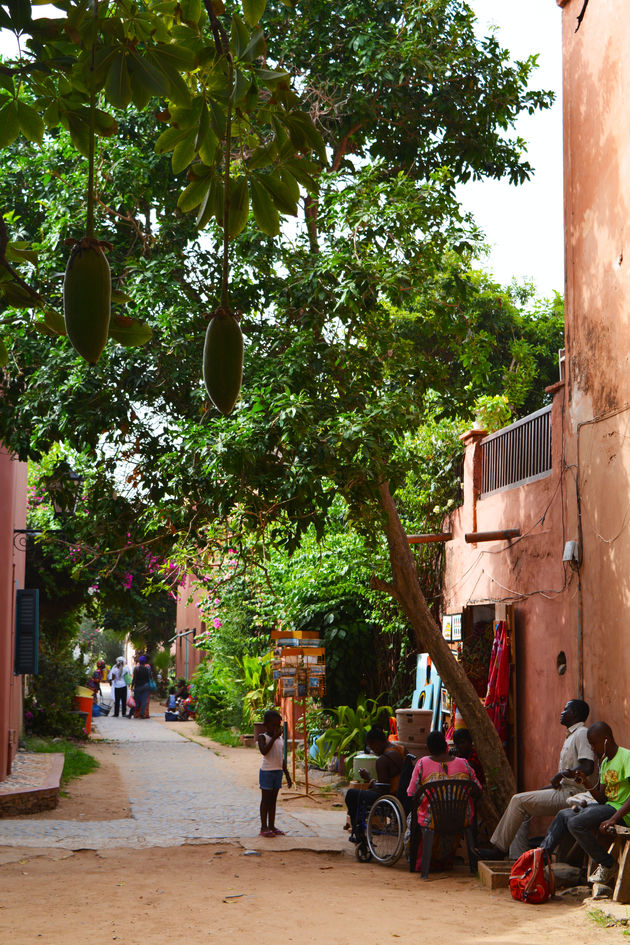 Goree-senegal-4