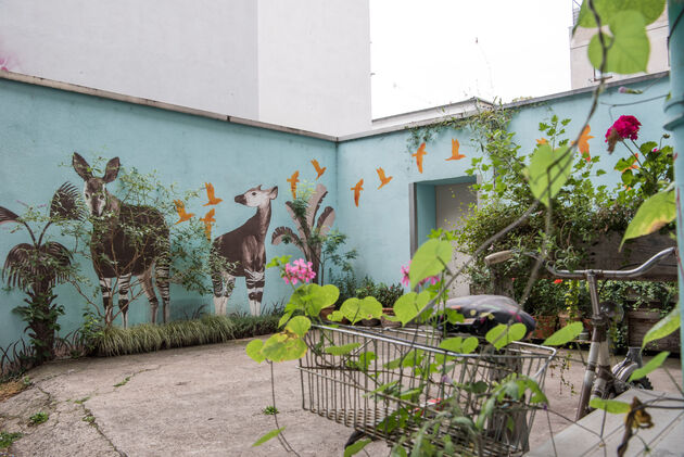graffiti-ehrenfeld