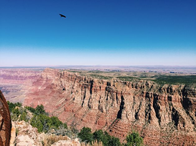 grand-canyon-natuurwonder-vs