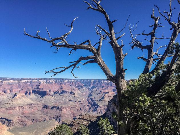 grand-canyon-uitzicht-1